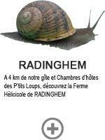 Radinghem